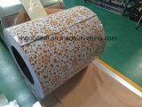 El color cubrió las bobinas de acero de la impresión PPGI/PPGL de la alta calidad