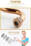 Faucet cerâmico chinês da bacia do projeto novo (Zf-601)
