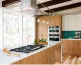 Gabinete de cozinha de madeira do bordo do projeto de projeto
