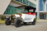 Origianl 제조자 4 전송자 전기 포도 수확 2 륜 마차 차