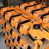Grue manuelle d'élévateur à chaînes de l'élévateur G80 de levier