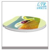 Plastik gedruckter Abziehbilderlustiger dekorativer Bidet-Toiletten-Sitzdeckel mit weichem Closing Scharnier