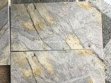 カウンタートップのための磨かれたAristonの金の花こう岩の平板