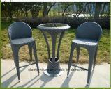 Tableau et présidence en osier de barre de patio extérieur de meubles de rotin de loisirs