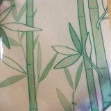 El verde decorativo helado de la película translúcida de la ventana deja las etiquetas engomadas de cristal para el servicio
