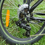 2017 Form-faltbares elektrisches Fahrrad (RSEB-103)