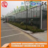 중국은 Venlo 야채 또는 꽃 강화 유리 녹색 집을 조립식으로 만들었다