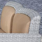 قماش فنية [رتّن] أريكة إدماج محدّد خارجيّ وقت فراغ أثاث لازم