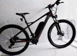 20 Kohlenstoff-Faser-elektrisches Fahrrad der Zoll-Rahmen-hallo QualitätsMTB