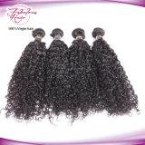 Cheveu brésilien non transformé de Vierge bouclée intacte de cheveux humains de cuticles