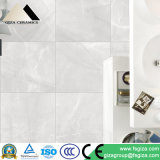 Azulejos de suelo grises de la porcelana del color en los 60*60cm (CK60910)