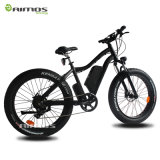 """26 """"Bicicleta elétrica da montanha Fat Tire 48V 500W Mountain"""