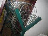 Rete fissa della rete metallica del rasoio di alta obbligazione con il prezzo di fabbrica