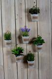 Diversas plantas artificiales como decoraciones colgantes con el crisol de papel de Mache