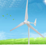 1kw 2kw 3kw 수평한 Aixs 바람 터빈/풍력 발전기/바람 에너지 장비