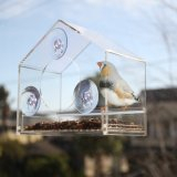 Wilde Vogel-Zufuhr gebildet im China-Hersteller mit bestem Preis