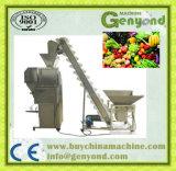 Vegetal que lava fazendo a linha de processamento da máquina