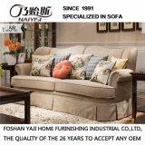 Amerikanisches Land-Art-Gewebe-Sofa für Hauptgebrauch (M3013)