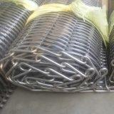 Banda transportadora/banda transportadora del acero inoxidable