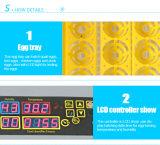 Mini incubatrice automatica trasparente delle uova del pollo di Digitahi 96 dell'incubatrice dell'uovo