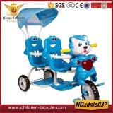 أطفال توسمات درّاجة ثلاثية/اثنان مقادة طفلة درّاجة ثلاثية مع ظلة