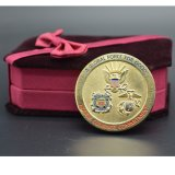 海軍挑戦硬貨の軍の製品米国部