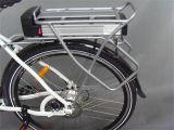 250Wブラシレスモーターリチウム電池都市電気バイク(JSL033A-2)