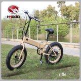 Bici elettrica piegante di vendita calda 2016 con 7-Speed Derailleur