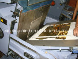 Modelo caliente de la troqueladora de la hoja (TYMQ-750)