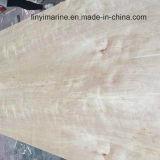 contre-plaqué normal de bouleau de 18mm*1220*2440mm B/B pour la colle environnementale de meubles