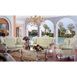 Sofà di cuoio domestico per la mobilia del salone (D528)