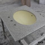 수채를 가진 현대 단단한 지상 베이지색 목욕탕 허영 상단