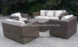 屋外の庭の藤のソファーセット