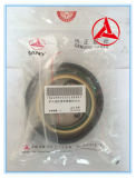 Sany Exkavator-Zylinder-Dichtungs-Teilenummer 60248045 für Sy35