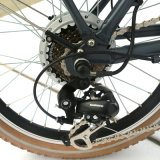36V Lithium Folded Electric Bike (LN20F1502)