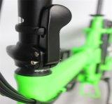 """Bicicleta eléctrica gorda del marco de la aleación de aluminio del estilo 250W rápido verde 20 """" (JSL039K-1)"""