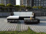 Пластичным сплетенная ротангом софа мебели напольная