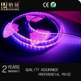 RGB 지구 빛 DC12V/220V SMD LED는 5050/의 LED 지구 빛을 분리한다