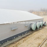 직업적인 Design High Standard Chicken Shed와 Chicken Farm