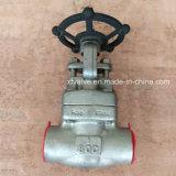 API602 a modifié la soupape à vanne de l'extrémité d'amorçage de l'acier inoxydable F304 TNP