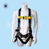 Ceinture de sécurité de haute sécurité avec la ceinture de maintien (EW0113H)