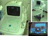 Apparaat van de Ultrasone klank van het Gebruik van /Pet/ van de dierenarts het Dierlijke Draagbare met de Dierlijke Software van de Ultrasone klank