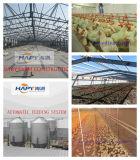 De Globale Agenten van Recruite in de Bouw van het Huis van de Landbouw van het Gevogelte en Automatische Apparatuur