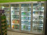 Assembleer de Gang van de Opslag van het Gemak van de Supermarkt van het Type in Koeler
