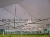 10X20白い折るテント
