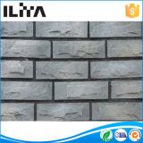 Pietra artificiale della coltura per il rivestimento della parete, il mattone (YLD-13015)