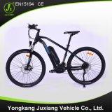 Vélo de montagne électrique de vente de trame chaude d'alliage d'aluminium