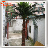Decoration를 위한 상록 Fiberglass Artificial Palm Tree