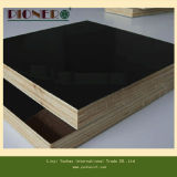 Black Film Faced Plywood at Competitive Price for Singapore Market