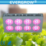 Alto potere 120X3w LED Indoor Grow Lights